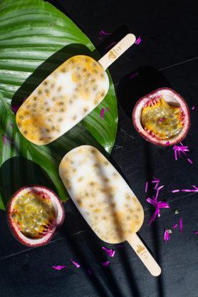 Un Yaourt Glacé naturel et artisanal sur un bâtonnet rempli de fruits frais